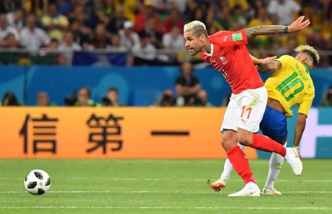 Zvicra ndal Brazilin